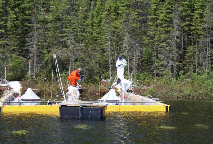 Researchers, monitor, deliberate spill, oilsands, bitumen, crude oil,
