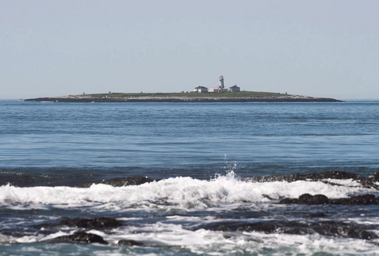 Machias Seal Island,