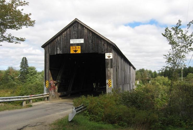 McGuire Bridge, Elmsville,