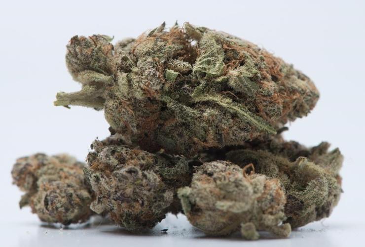 Medical marijuana, Toronto,