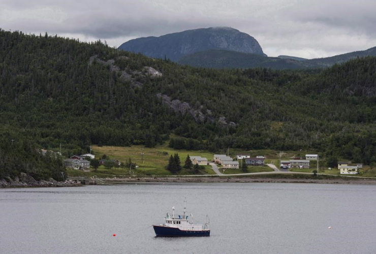 fishing boat, Neddy Harbour, Gros Morne National Park, Newfoundland and Labrador,