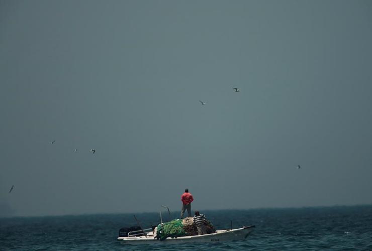 fishing boat, coast of Fujairah, United Arab Emirates,