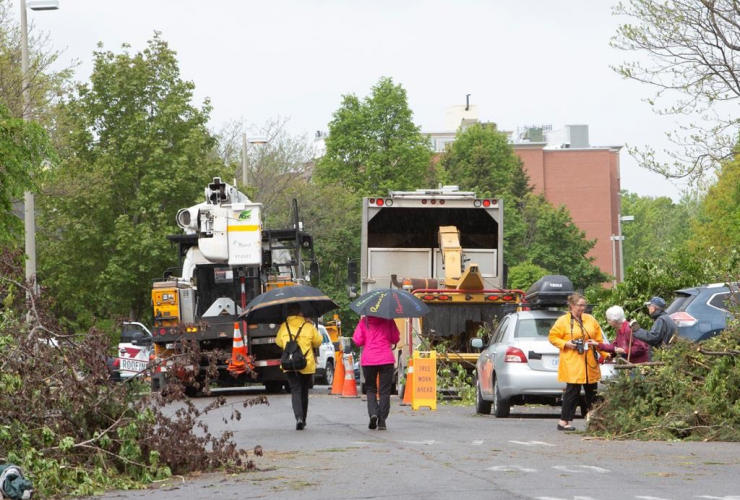 Residents, survey, damage, tornado, Ottawa, Orleans,