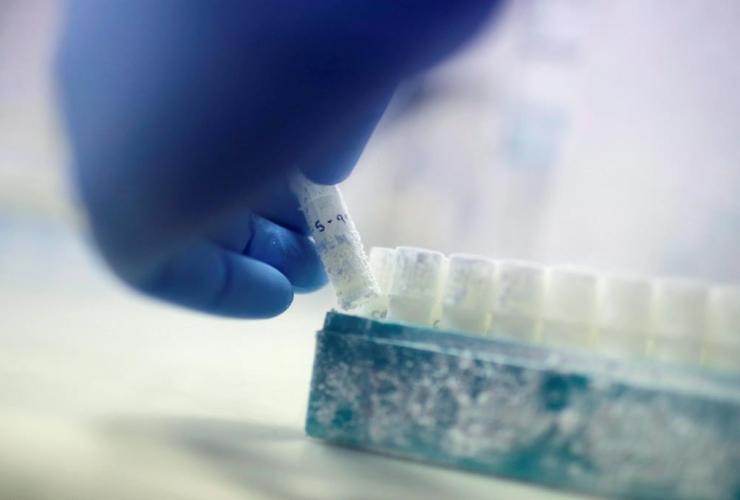 Scientist, Fabrice De Bond, vial, frozen donor sperm samples,