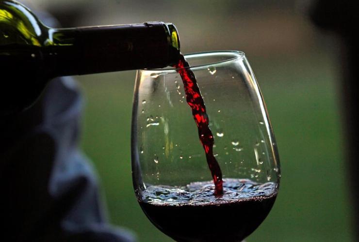 glass of wine, vineyard, Chile,