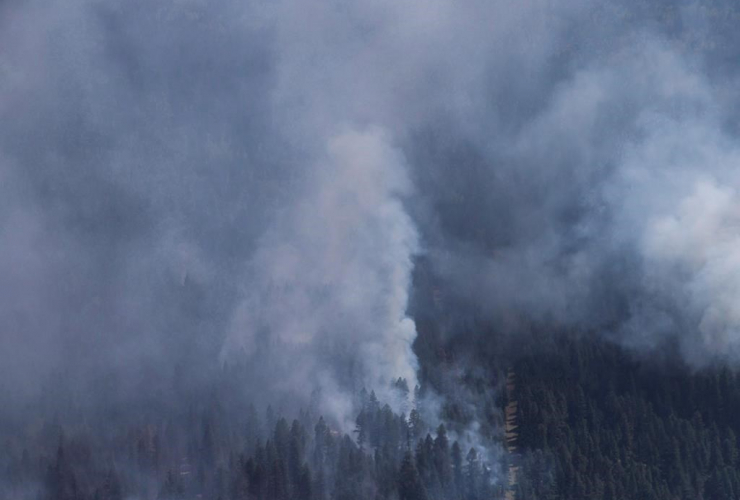 wildfire, Canadian Forces Chinook helicopter, wildfire, Williams Lake, B.C.,