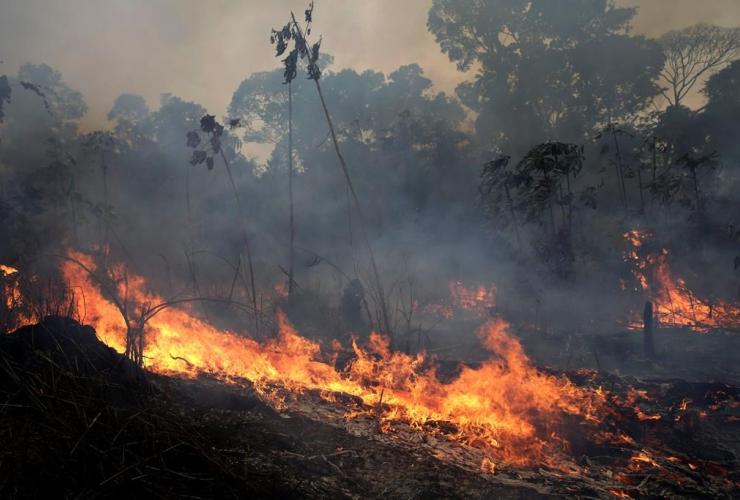 fire, Jacunda National Forest, Porto Velho, Vila Nova Samuel, Brazil's Amazon,
