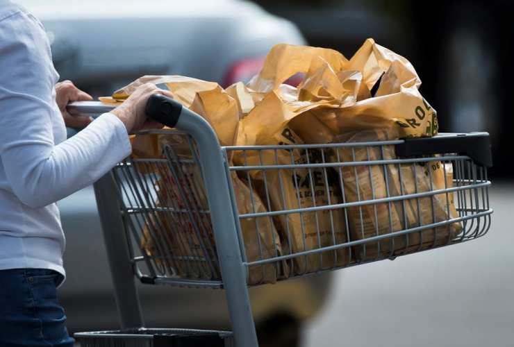 A women leaves a grocery store using plastic bags in Mississauga, Ont., on Thursday, August 15, 2019. File photo by The Canadian Press/Nathan Denette