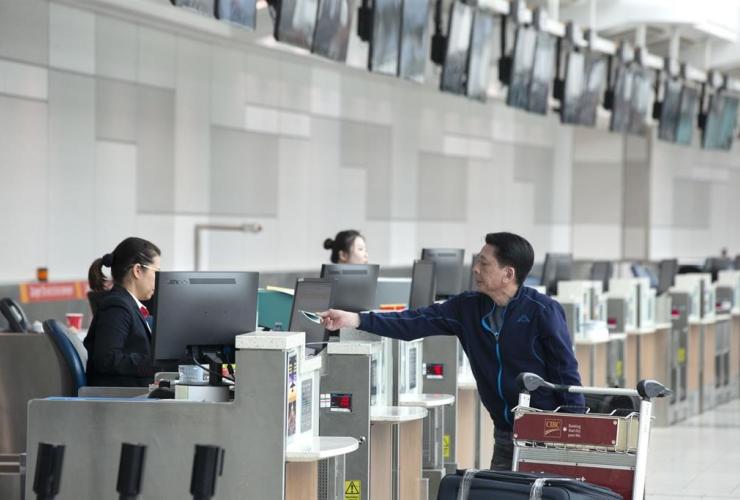 passenger, check-in desk, departure terminal, Toronto Pearson Airport,