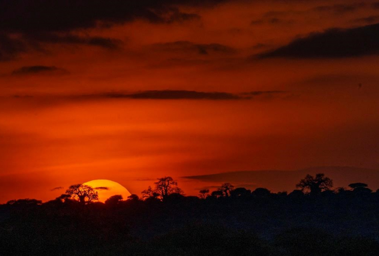 sun set, Tanzania, Tarangire National Park,