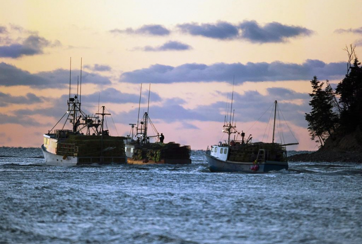 Fishing boats, lobster traps, Eastern Passage,