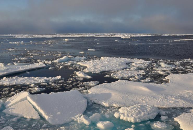 Arctic Ocean ice,