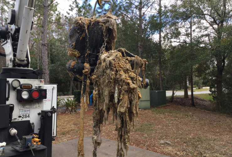 Workers, Arlington County Department of Environmental Services, Arlington, Virginia, flushable wipes, city sewers,