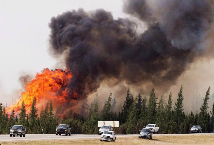 convoy, evacuees, Fort McMurray, Alberta, wildfires,