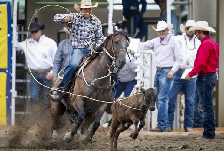 Caleb Smidt, Texas, calf, rodeo action, Calgary Stampede, Calgary,