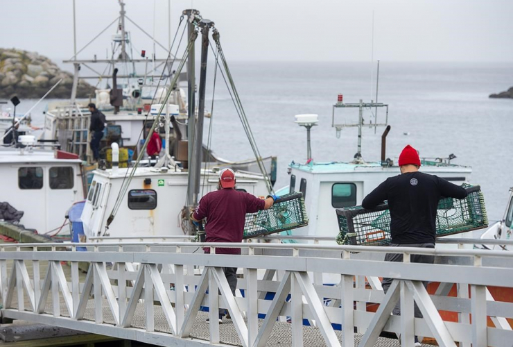 Indigenous fishermen, lobster traps, Saulnierville,