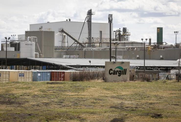 Cargill beef plant,