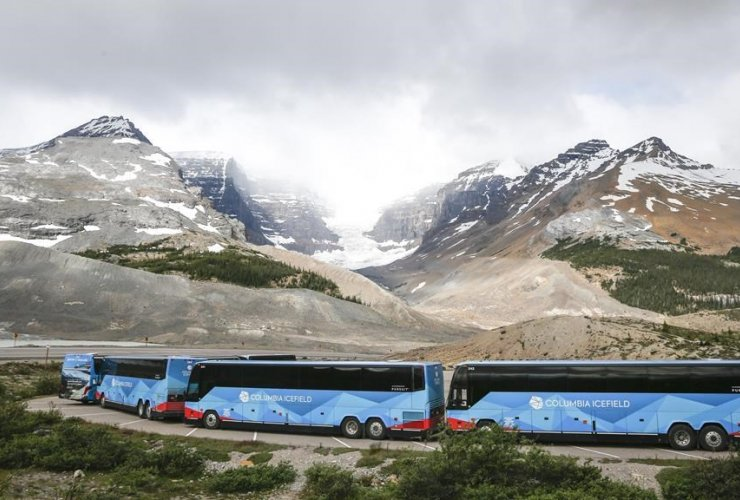 Tour buses, Columbia Icefields,