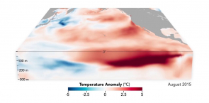 The Birth and Death of an El Niño
