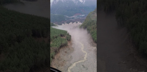 Massive Bute Inlet landslide destroys wildlife habitat on B.C. coast