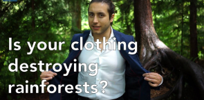 Has your clothing destroyed orangutan habitats?