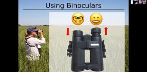 Bird identification basics by LeeAnn Latremouille, Saskatchewan breeding bird atlas coordinator, Birds Canada.